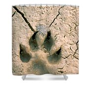 Coyote Print Shower Curtain