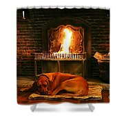 Cozy By The Fire Shower Curtain