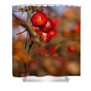 Crab Apple Bright Shower Curtain