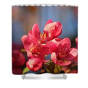 Crab Apple Shower Curtain