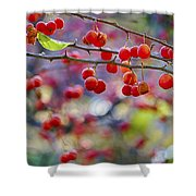 Crab Apples 2 Shower Curtain