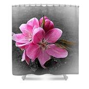 Crabapple Flower Shower Curtain