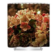 Crabapple In Bloom Shower Curtain