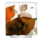 Crabapple Rose I Shower Curtain