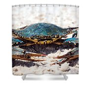 Crabby Crab Shower Curtain
