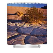 Cracked Mud - Sand Ripples 3 Shower Curtain