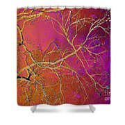 Crackling Branches Shower Curtain