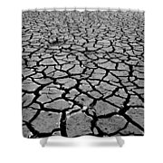 Cracks For Miles Black And White Shower Curtain