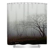 Craggy Gardens Mist Shower Curtain