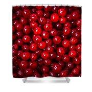 Cranberries - 1 Shower Curtain
