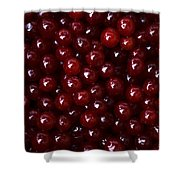 Cranberries - 2 Shower Curtain
