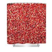 Cranberry Harvest 3 Shower Curtain