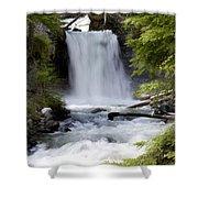 Crandel Creek Falls Shower Curtain