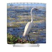 Crane At Pond Shower Curtain