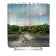 Crane Habitat Shower Curtain