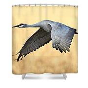 Crane Over Golden Field Shower Curtain