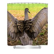 Crane Spreading Wings Shower Curtain
