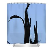 Crane Wood Shower Curtain