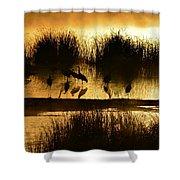 Cranes On Golden Pond Shower Curtain