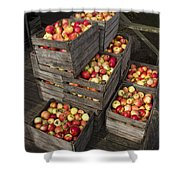 Crated Apples Shower Curtain