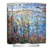 Crater Lake - 1997 Shower Curtain