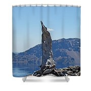 Crater Lake Lightning Tree Art Prints Blue Shower Curtain