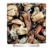Crayfish Shower Curtain