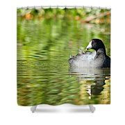 Crazy Coot Shower Curtain