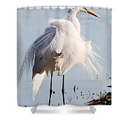 Crazy Egret Feathers Shower Curtain