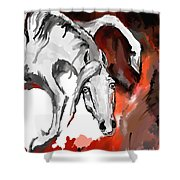 Crazy Horse 7 Shower Curtain