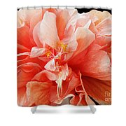 Creamsicle Crepe Paper Shower Curtain