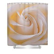 Creamy Swirl Shower Curtain