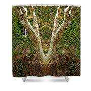Creation 422 Shower Curtain