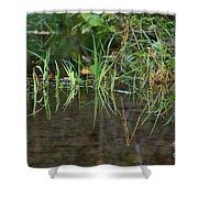 Creek Grass Shower Curtain