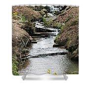 Creek In Alabama Shower Curtain