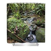 Creek In Mountain Rainforest Costa Rica Shower Curtain