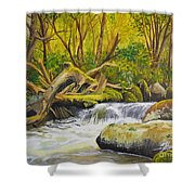 Creek In The Forest Shower Curtain