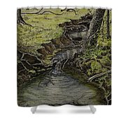 Creek  Shower Curtain