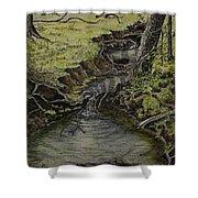 Creek  Shower Curtain by Janet Felts
