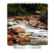 Creek No Paddle Shower Curtain