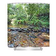 Creekside 2 Shower Curtain