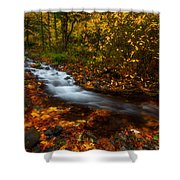 Creekside Colors Shower Curtain
