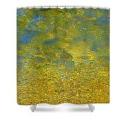 Creekwater Abstract Shower Curtain