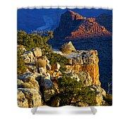 Creeping Morning Canyon Light Shower Curtain