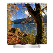 Crescent Through The Woods Shower Curtain