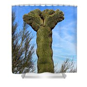 Crested Cactus Shower Curtain