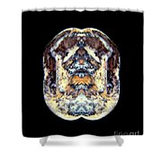 Crested Goose Fighter Shower Curtain