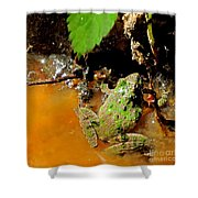 Cricket Frog Shower Curtain