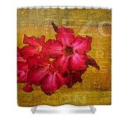 Crimson Floral Textured Shower Curtain