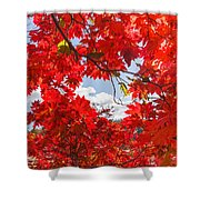Crimson Red Leaves Background Shower Curtain